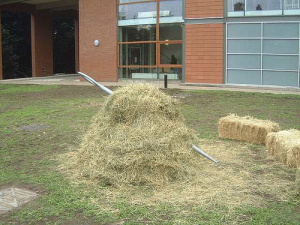 """Sadly, the needle is not always so easy to find -- but forums and niche communities can go a long way toward shrinking your virtual haystack. """"Needle in a Haystack,"""" James Lumb ."""